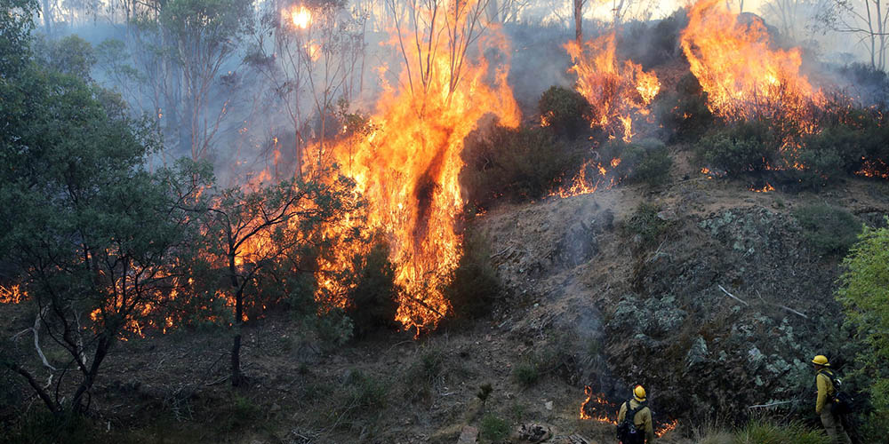 Police tie deadly Australia wildfires to 55 arson suspects while green groups blame climate
