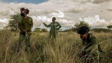 IFAW Rangers Kenya