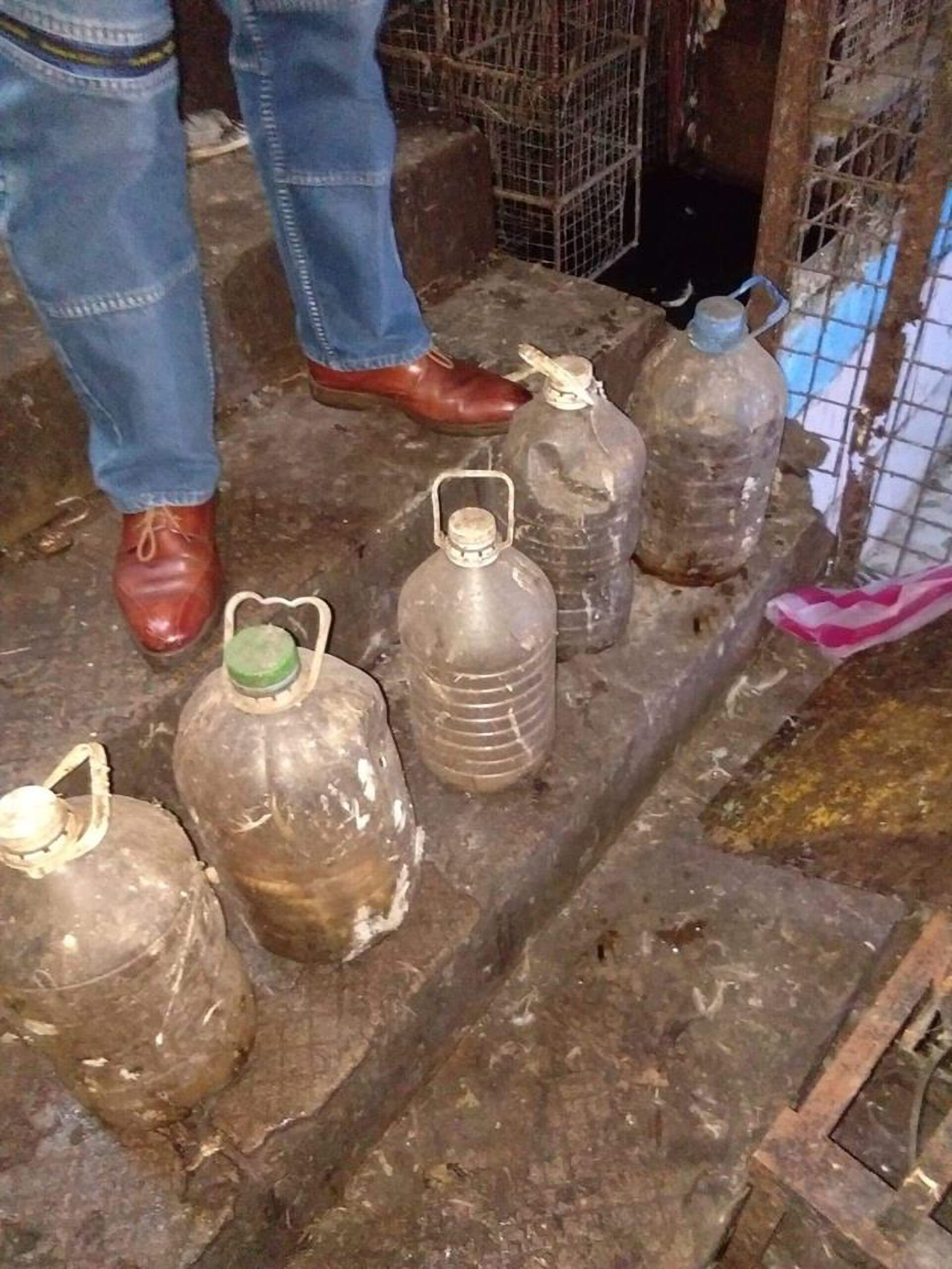 Hissing tips off inspector to 5 cobras in water bottles