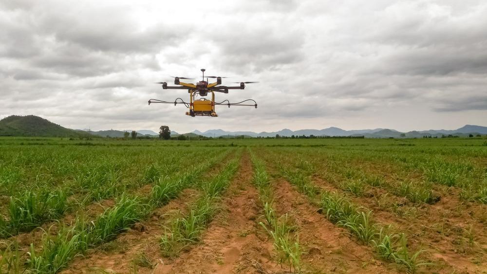 Drones irrigate part of Mazvazva's crops in the fourth quarter of 2019 (2)