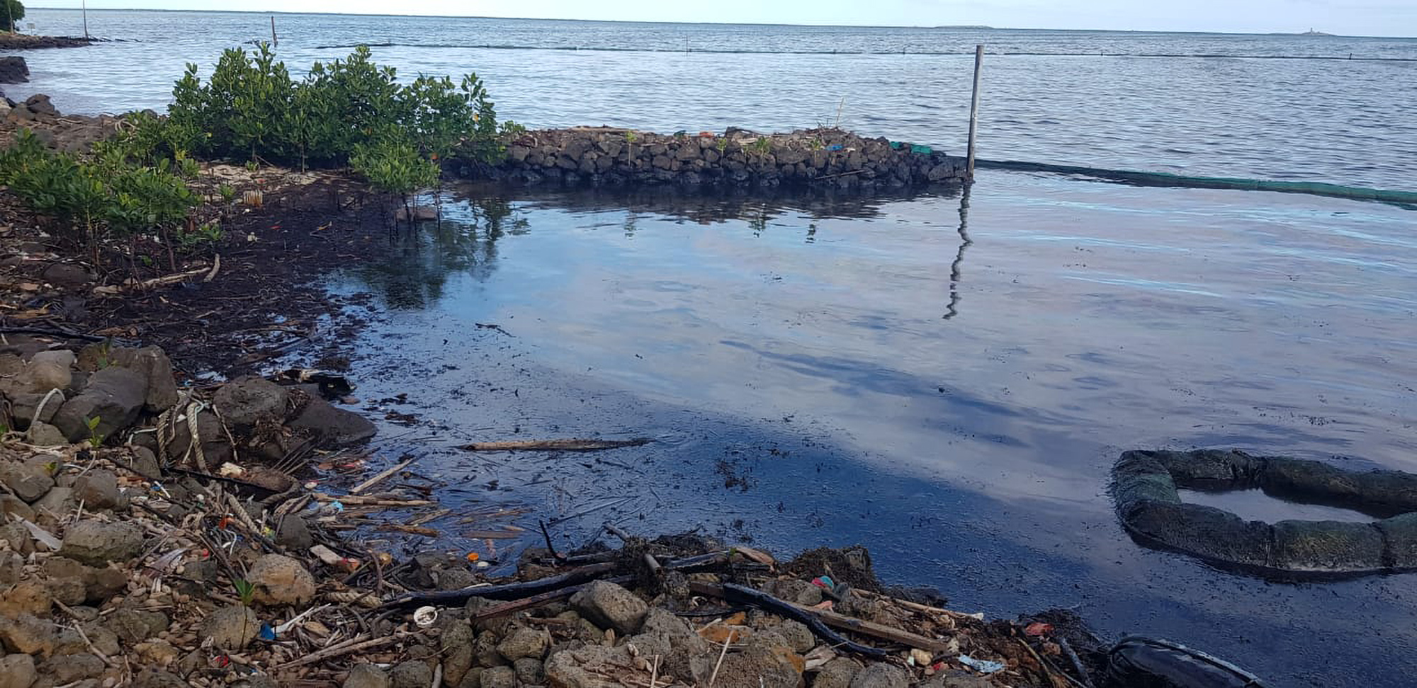 Eco Fury Over Official Inertia in Mauritius Oil Spill Catastrophe