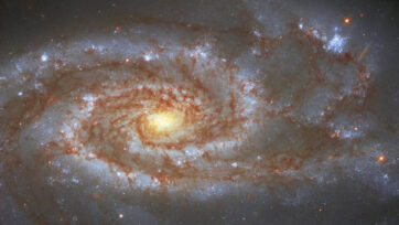Two Supernovae, One Galaxy