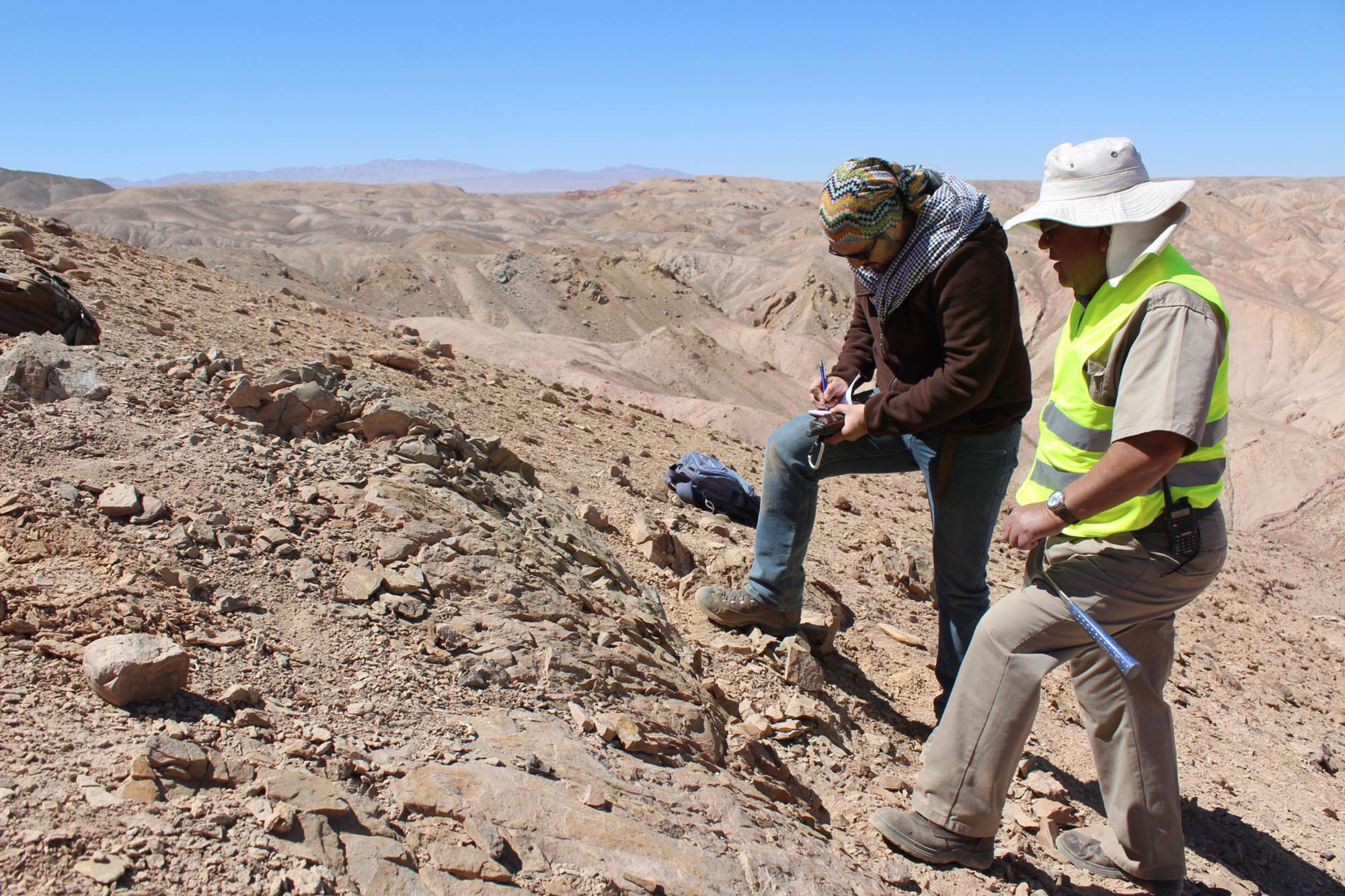 Juras-sea Park: Sea Dinosaurs Unearthed in Chilean Desert Show the Truth About Climate Change