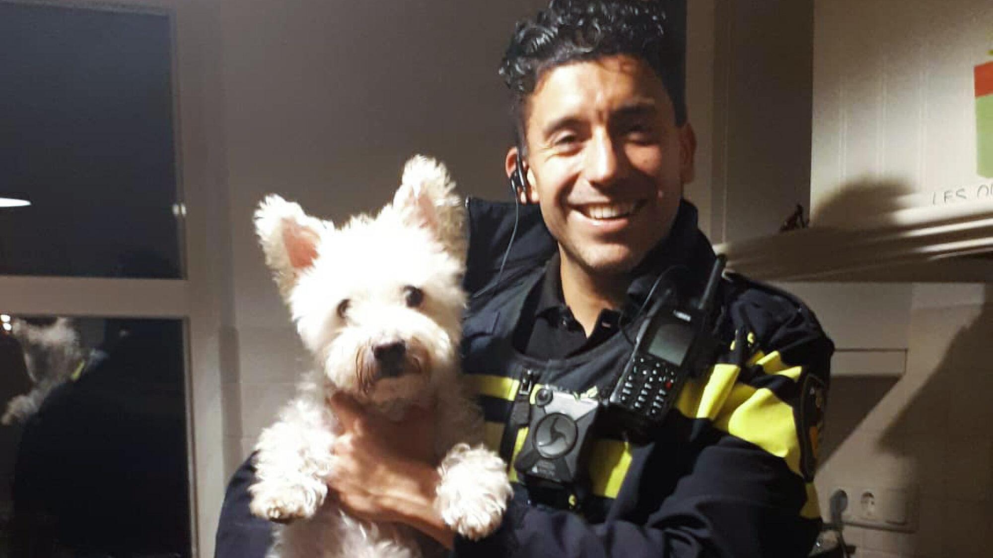 Baggin' Bad Guys: Dog Named Frodo Helps Police Catch 3 Burglars