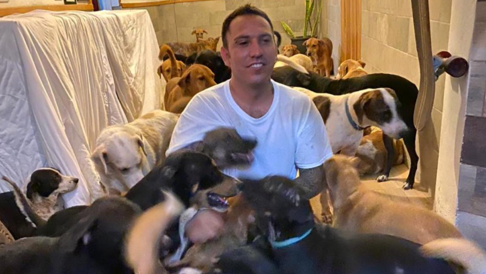 VIDEO: Man Shelters 300 Dogs In His Home From Hurricane Delta