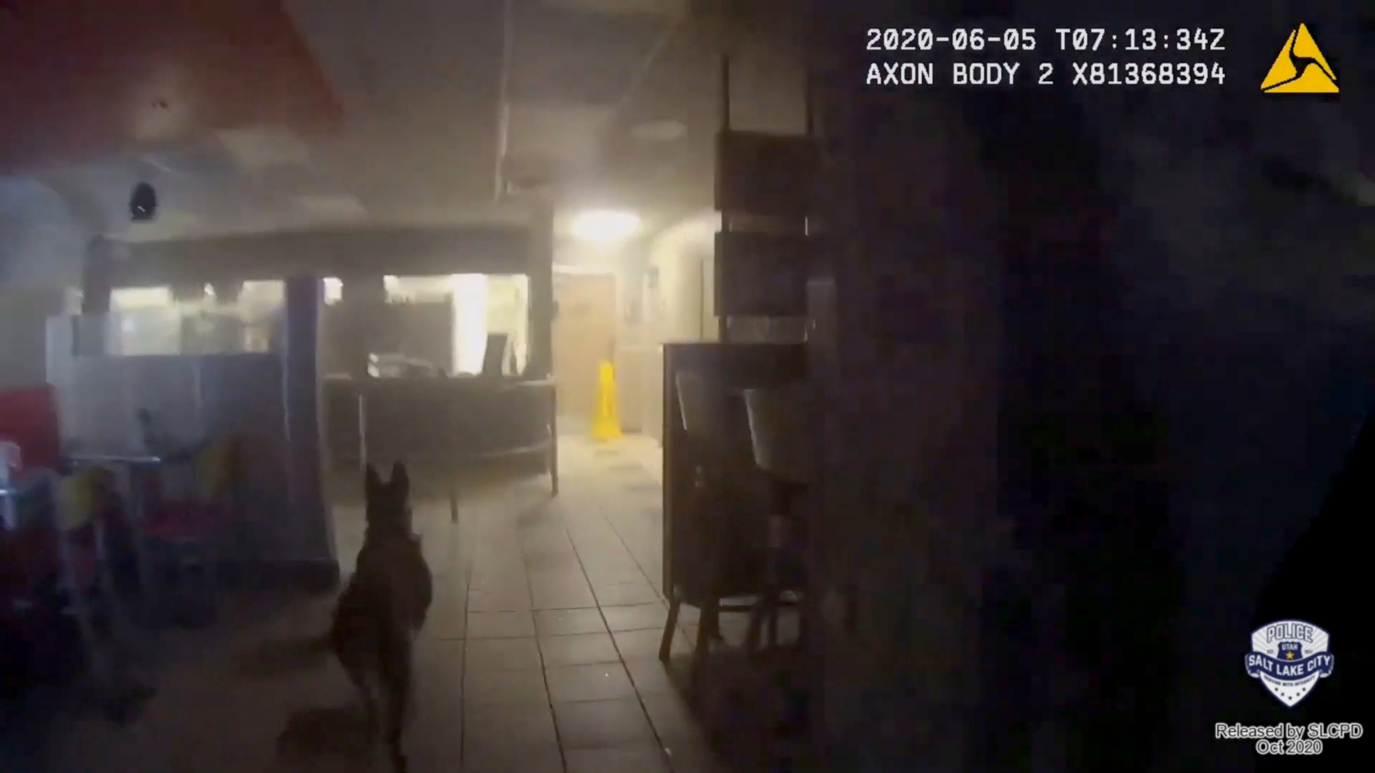 VIDEO: Utah Police Order Dog To Attack 14-Year-Old Surrendering Suspect