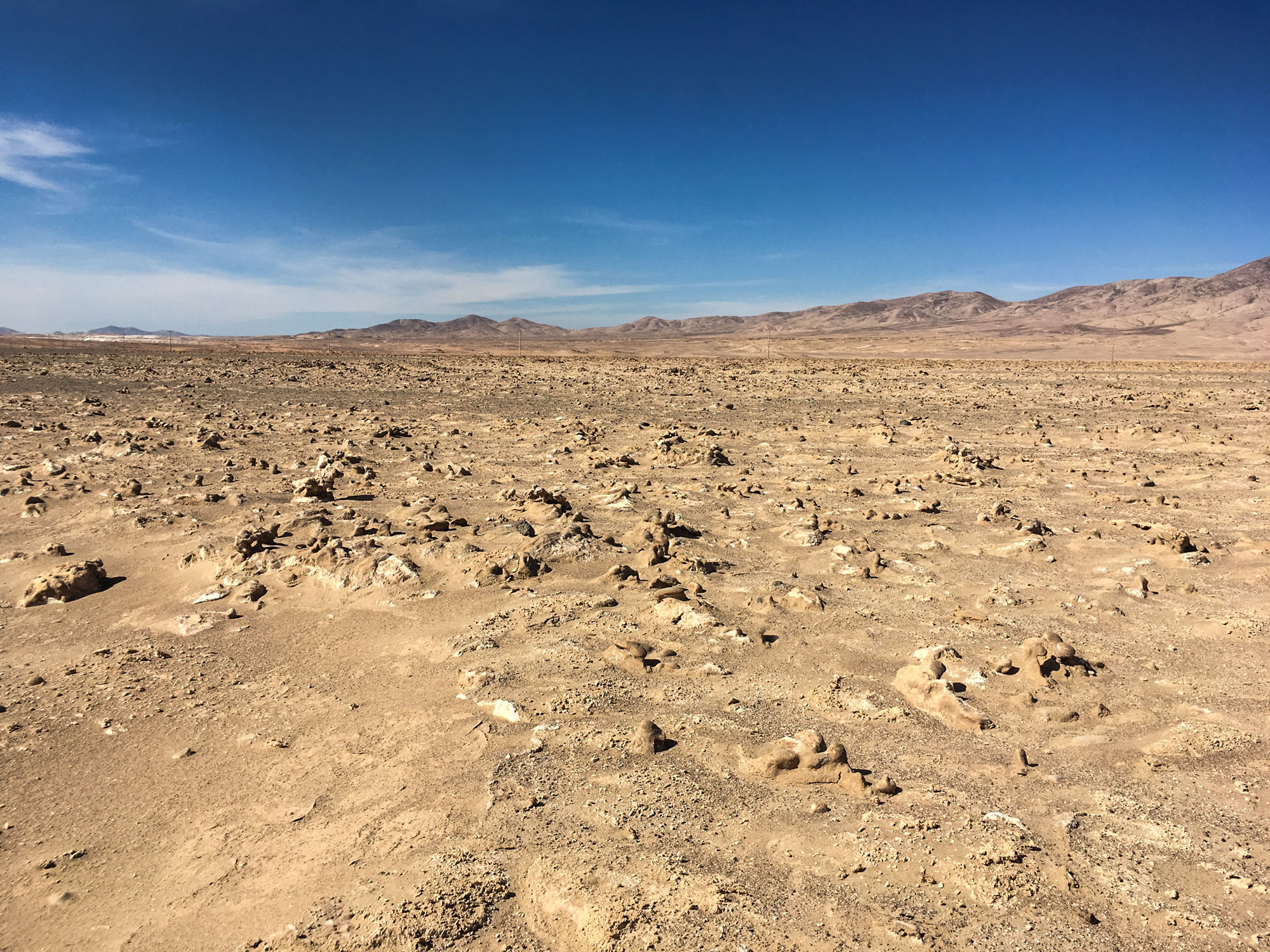 Is There Life on Mars? New Earthbound Study Offers a Strong Positive Clue