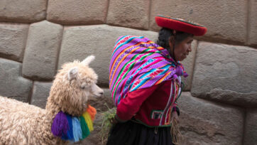 Daily Life in Cusco