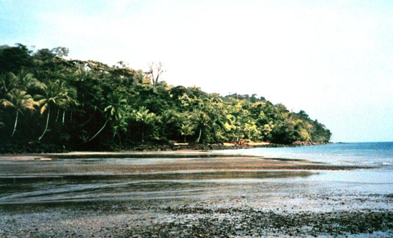 La Isla en Colombia que Pasó de Cárcel a Paraíso Tropical