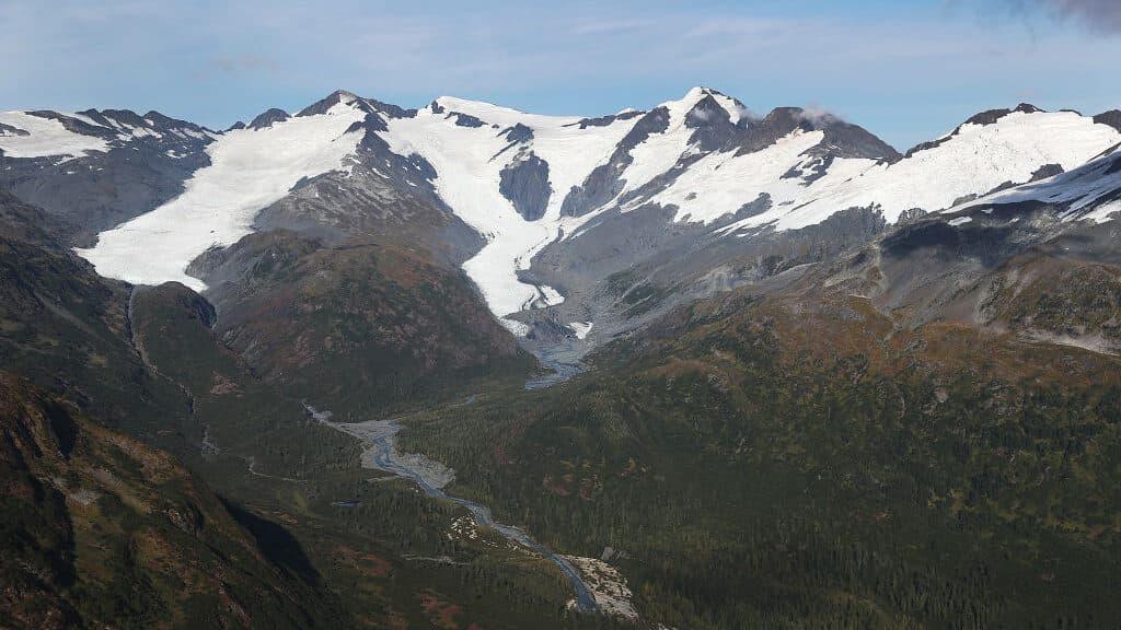 Smarter News Quiz: a Shock Resignation, a Hollywood Icon and Alaska Runway Roadkill
