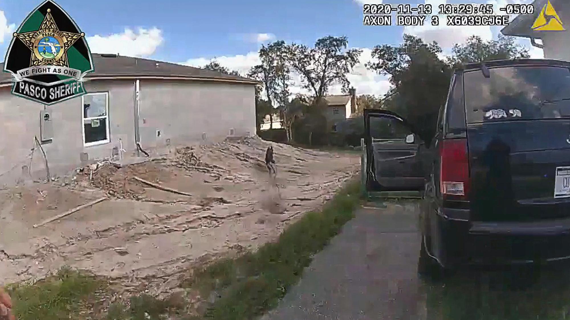 Florida Police Dog Captures Suspected Carjacker Fleeing Authorities