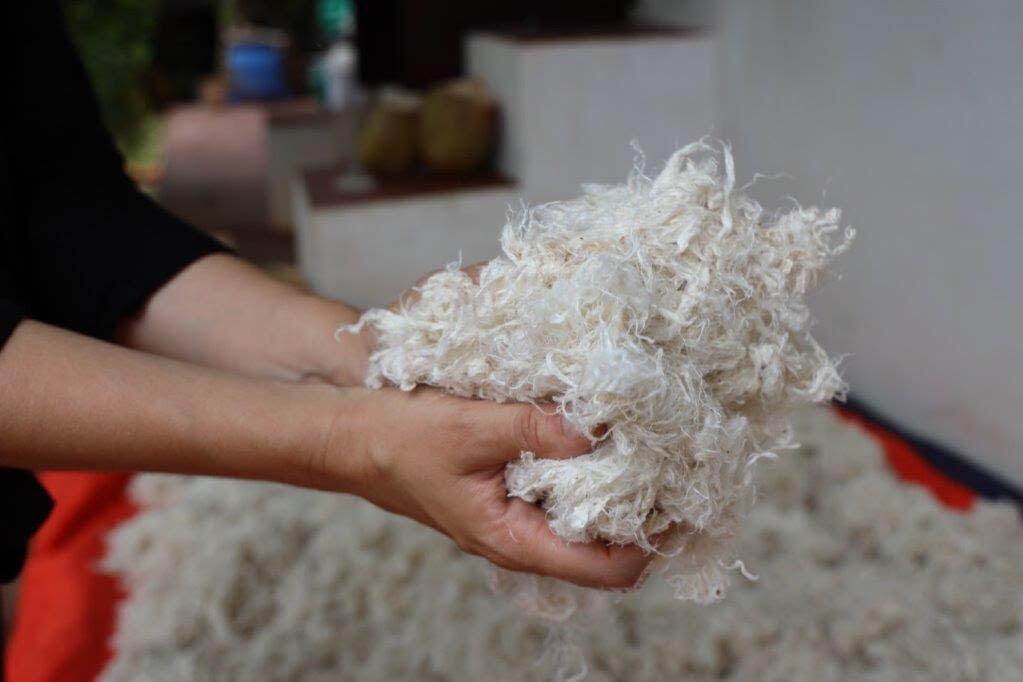 Indian Entrepreneur Creates Fine Vegan 'Wool' from Desert Plant