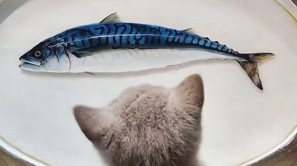 Feline Flummoxed by Ultra-Realistic 3D Fish Paintings