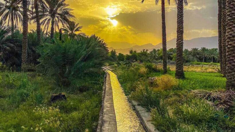 Omani Adventurer's Photos Promote His Picturesque Hometown