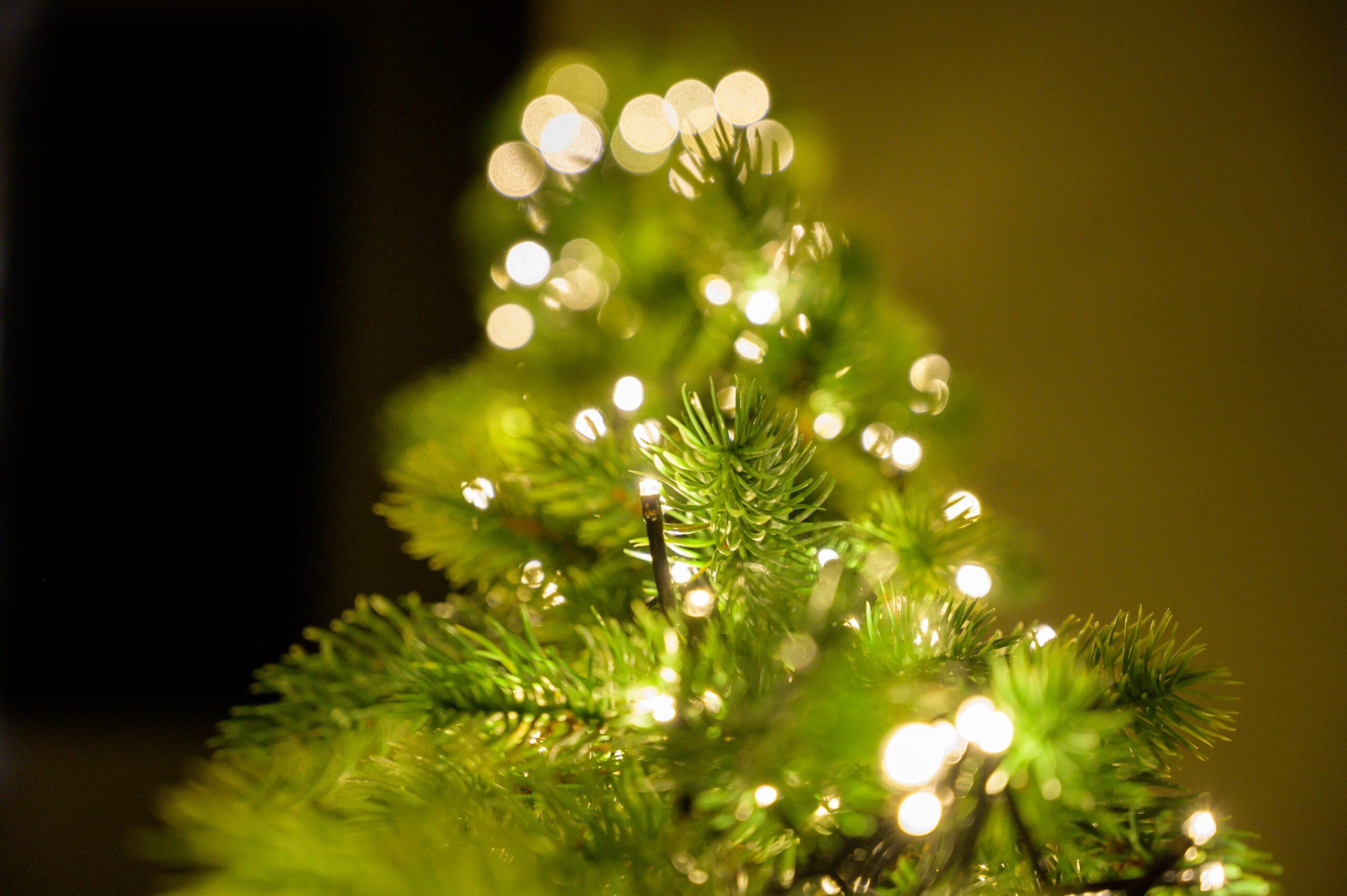 Estos son los colores oficiales del árbol de Navidad