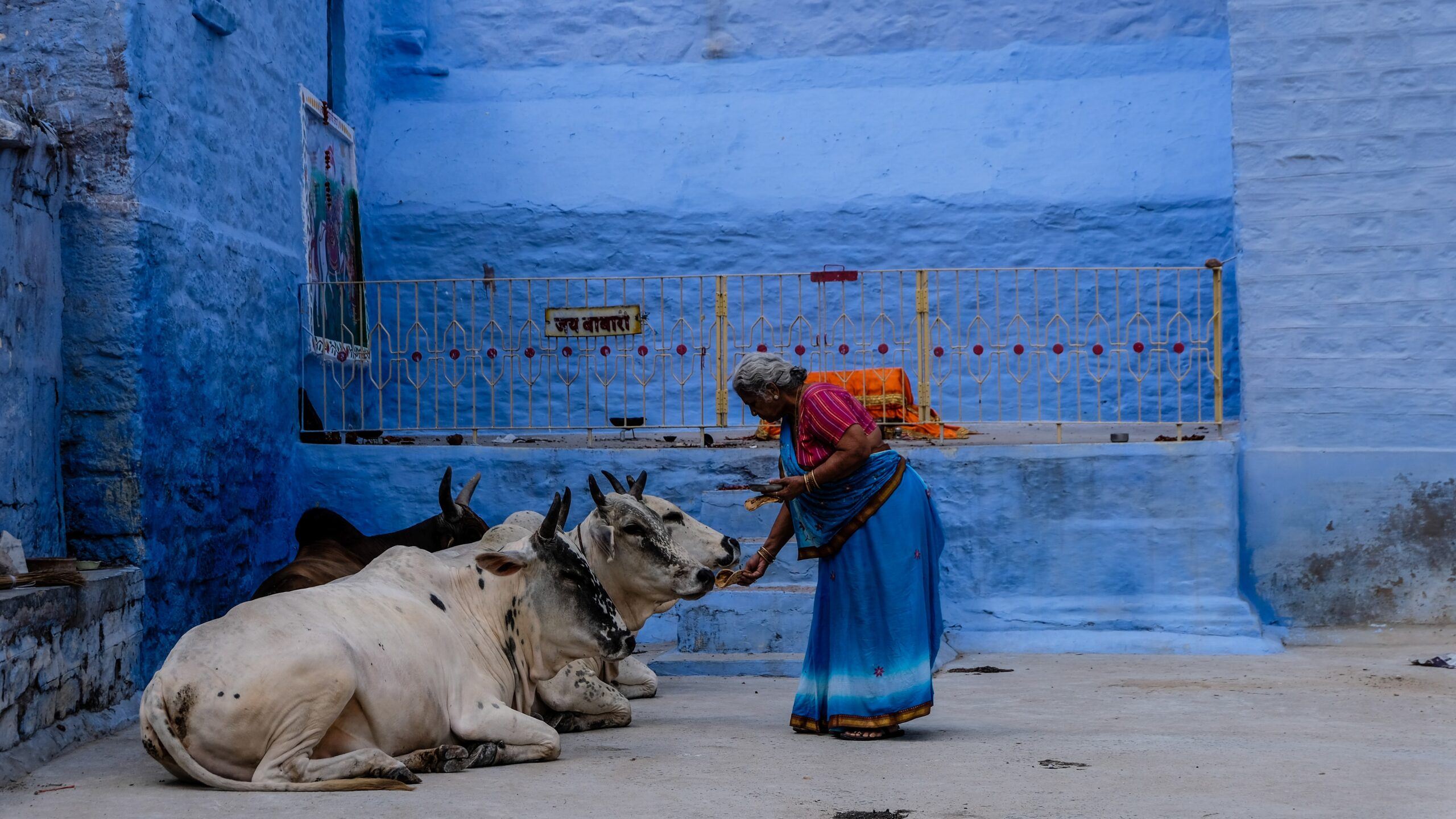 Latest Indian State to Ban Cattle Slaughter Raises Hackles