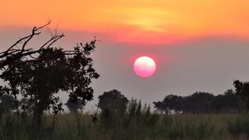 1440px-Sunset_in_the_Okavango_Delta