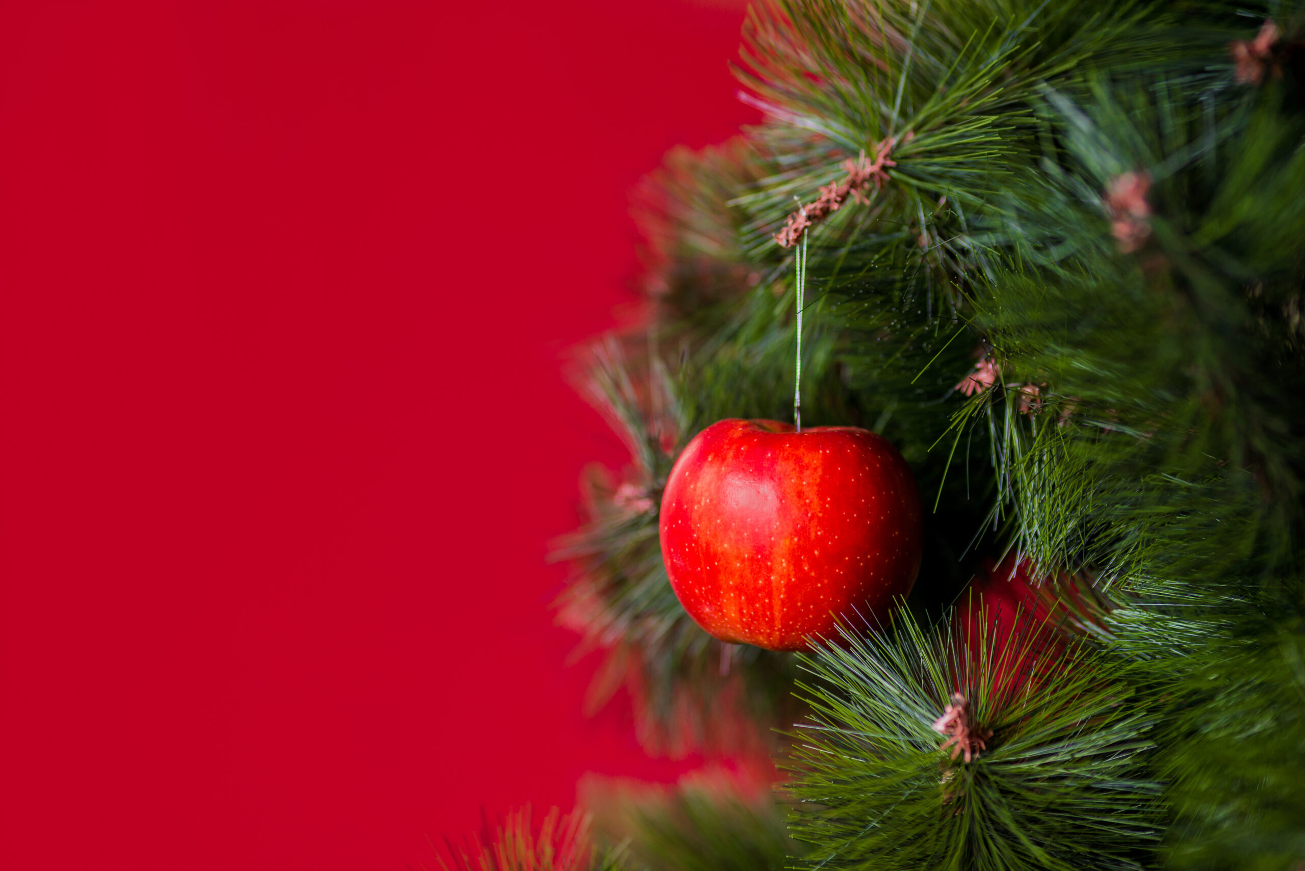 How Apples Are the Core of Christmas Tree Decorations