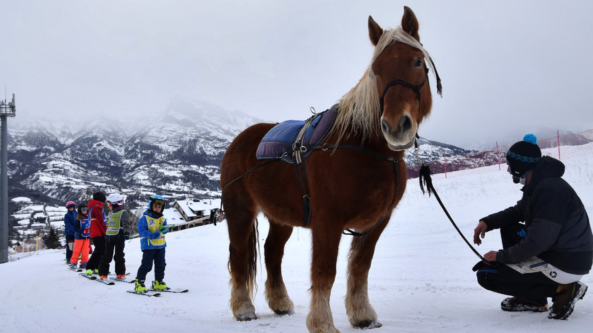 French Ski School Uses Horses to Pull Children Up the Slopes