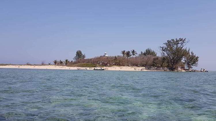 Turtle Paradise In Veracruz Remains Closed To The Public