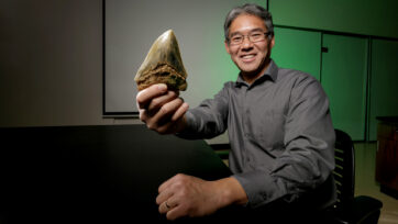 F) Kenshu Shimada with the tooth of an extinct shark Otodus megalodon. (DePaul University, Jeff Carrion, Kenshu Shimada . Real Press)