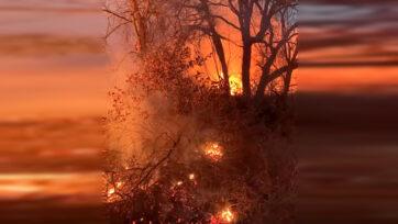 F)Wildland fire in Comanche. (@TXComancheVFD . Clipzilla)