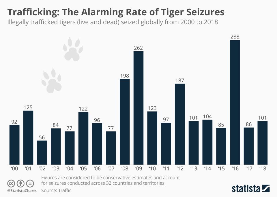 Tiger chart