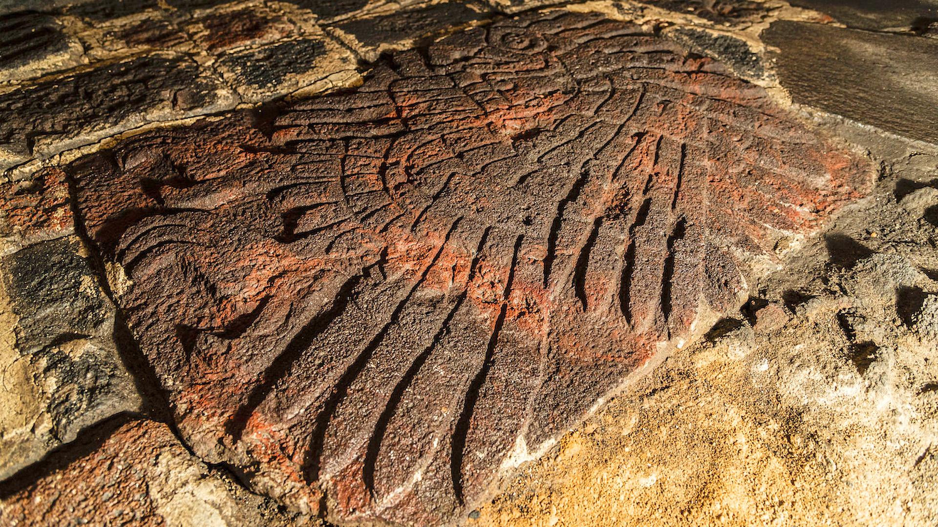 Aztec Carving Of Bird of Prey UnearthedIN Mexico