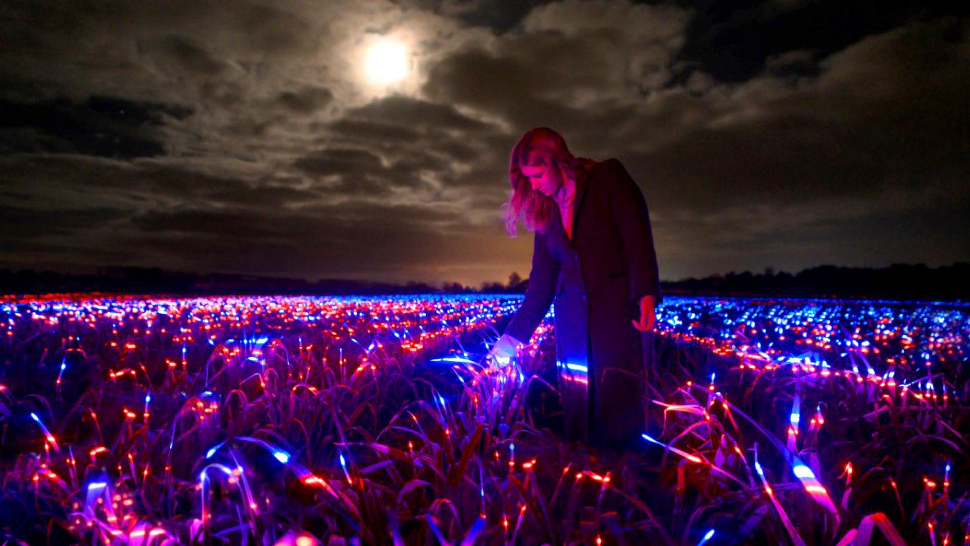 Dutch Creator Turns Leek Field Into Light Show Spectacular
