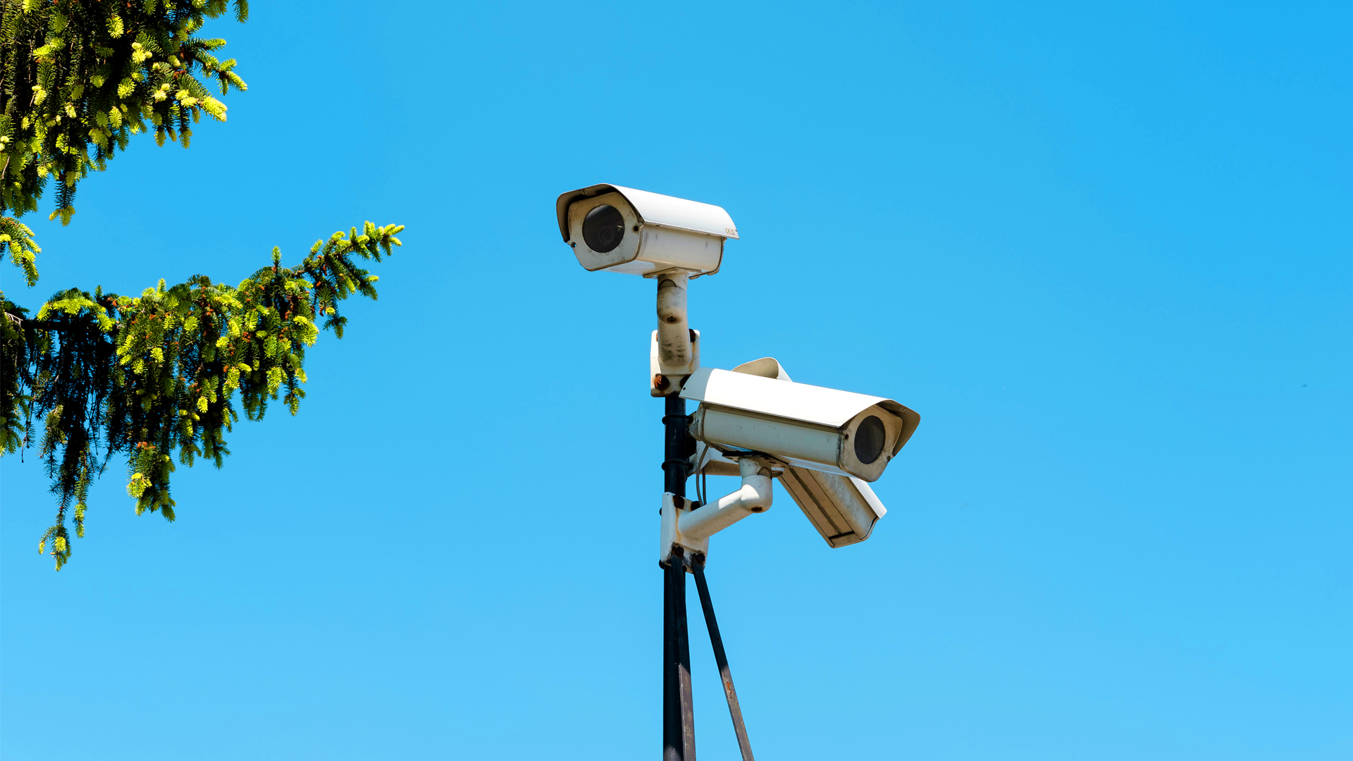 Activists Decry Police Use of Facial Recognition Cameras To Protect Women