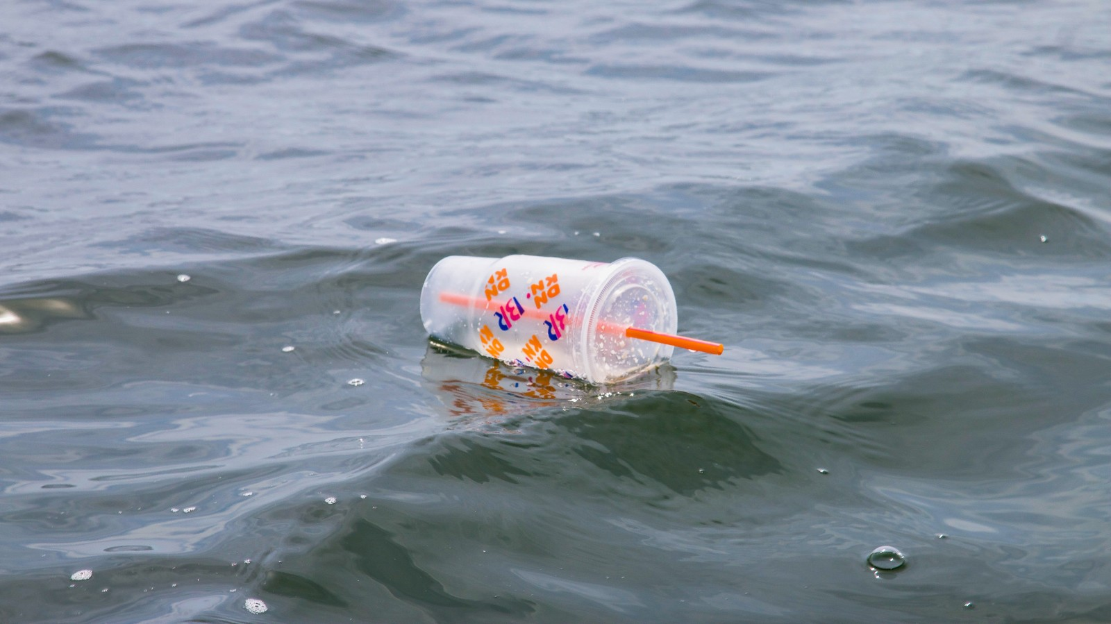 Windswept Microplastics Pose Bigger Risk Than Previously Thought, Study Says
