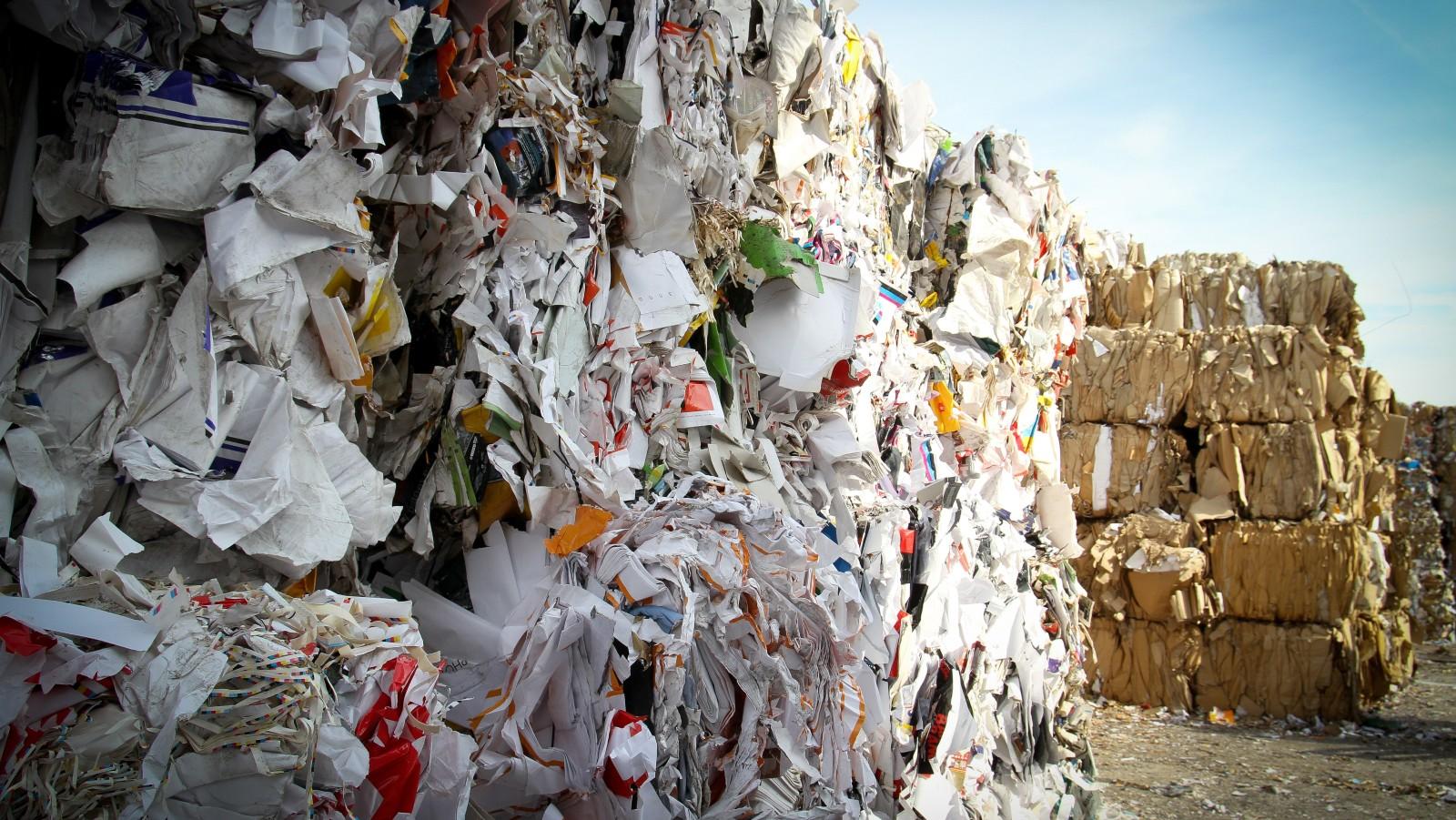 Paper Chase: Tackling Companies' Wasteful Printing Habits