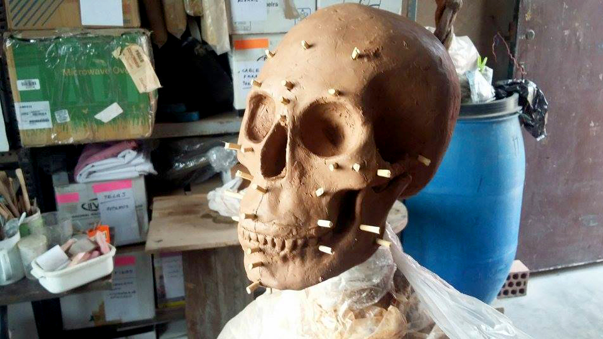 Face Of Ancient Peruvian Priestess Brought Back To Life