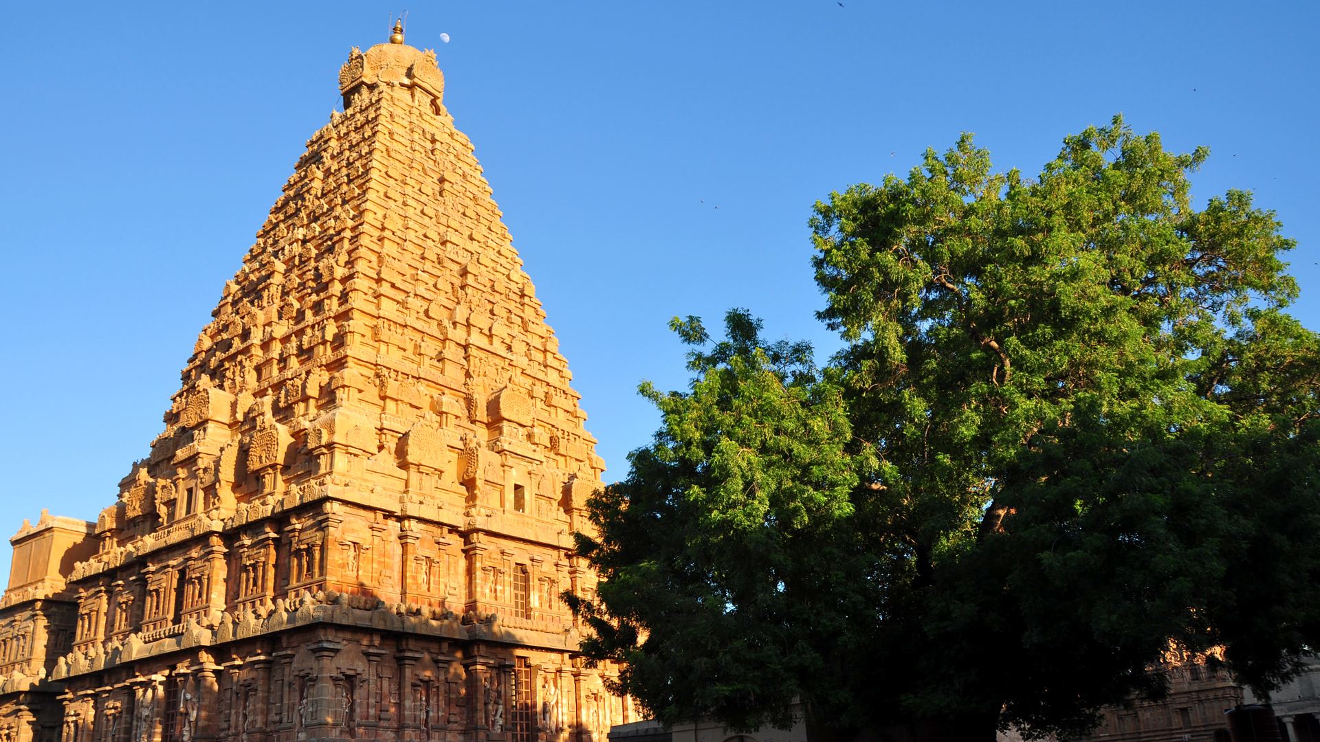 Tanjore Is India's Hidden Gem For Lovers Of History And Culture