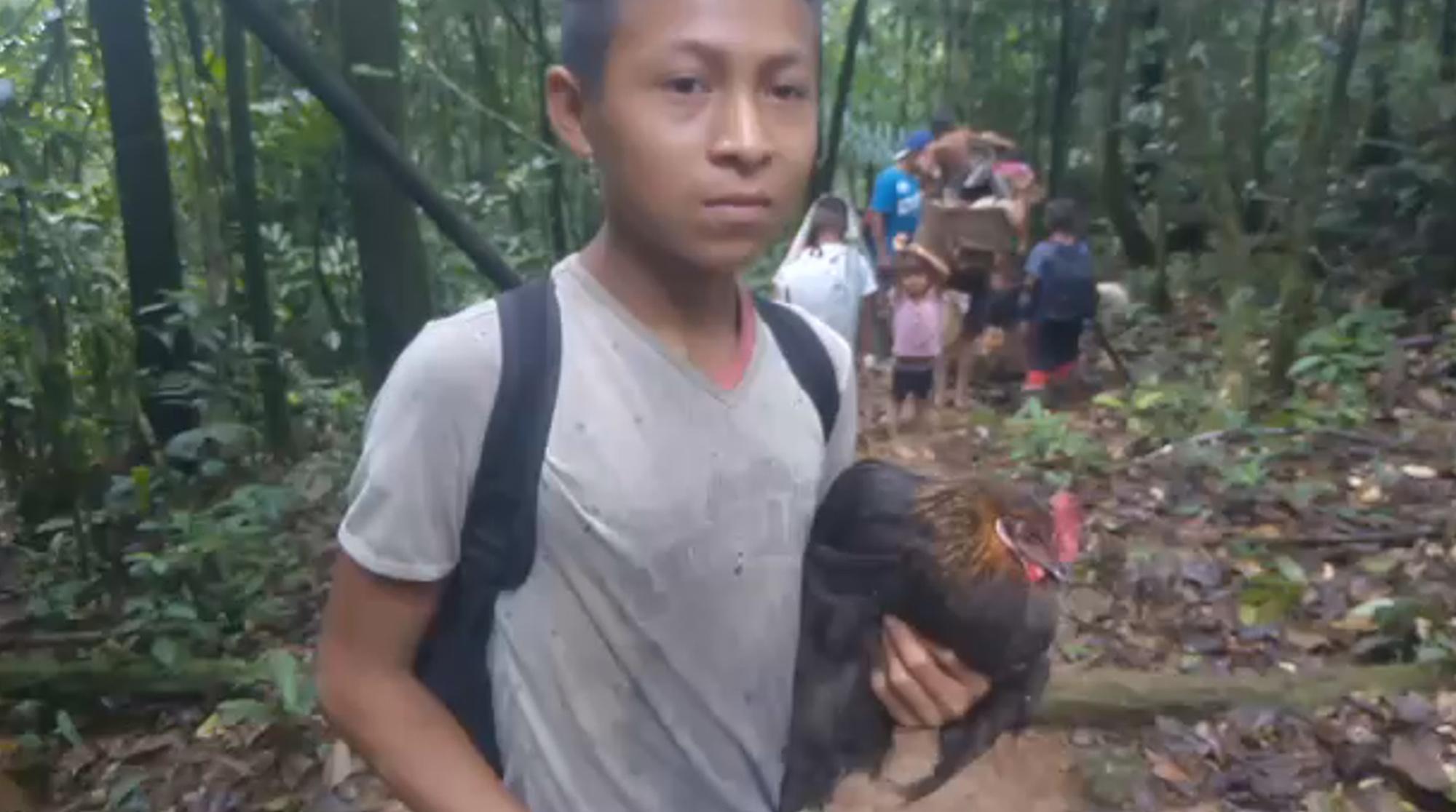 Indígenas colombianos desplazados por bandas violentas de narcos