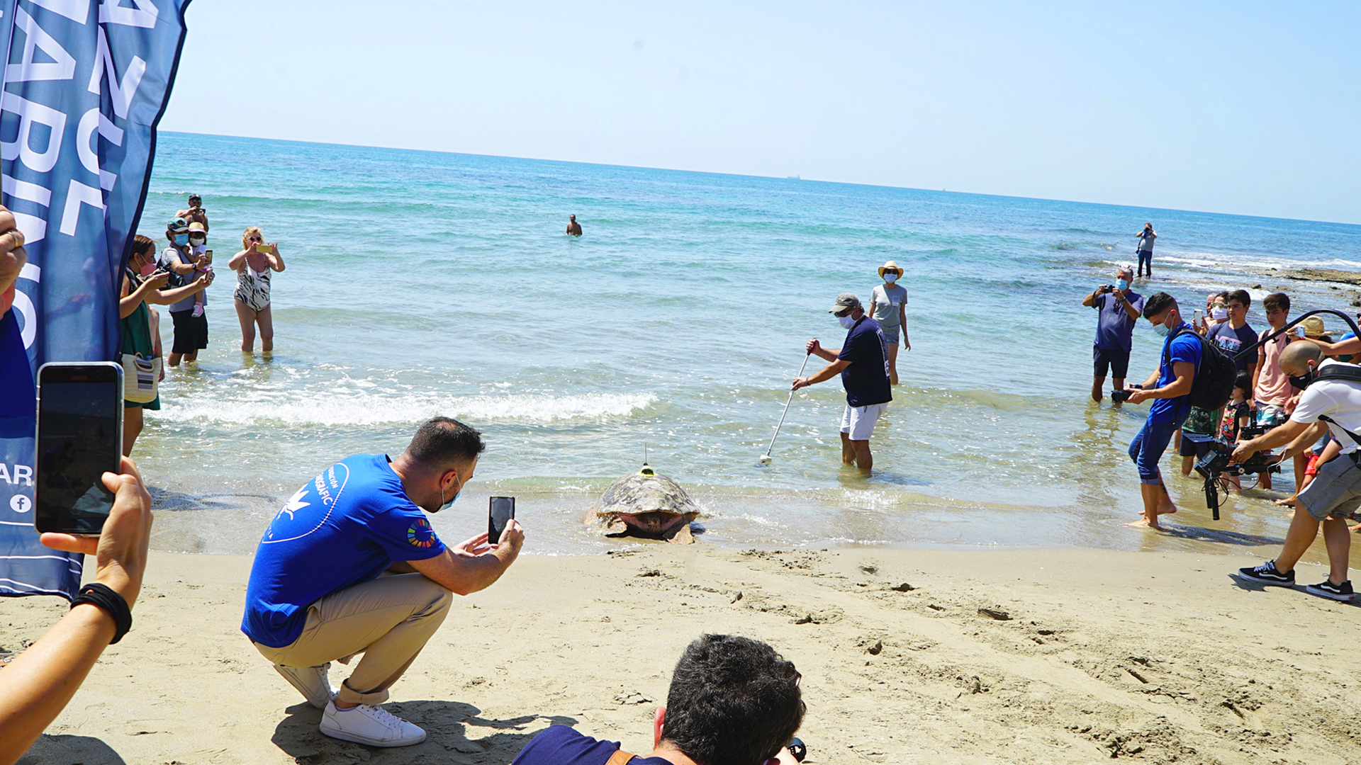VIDEO: Turtlely Covered: Rescued Loggerhead Fitted With GPS To Track Its Epic Ocean Odyssey