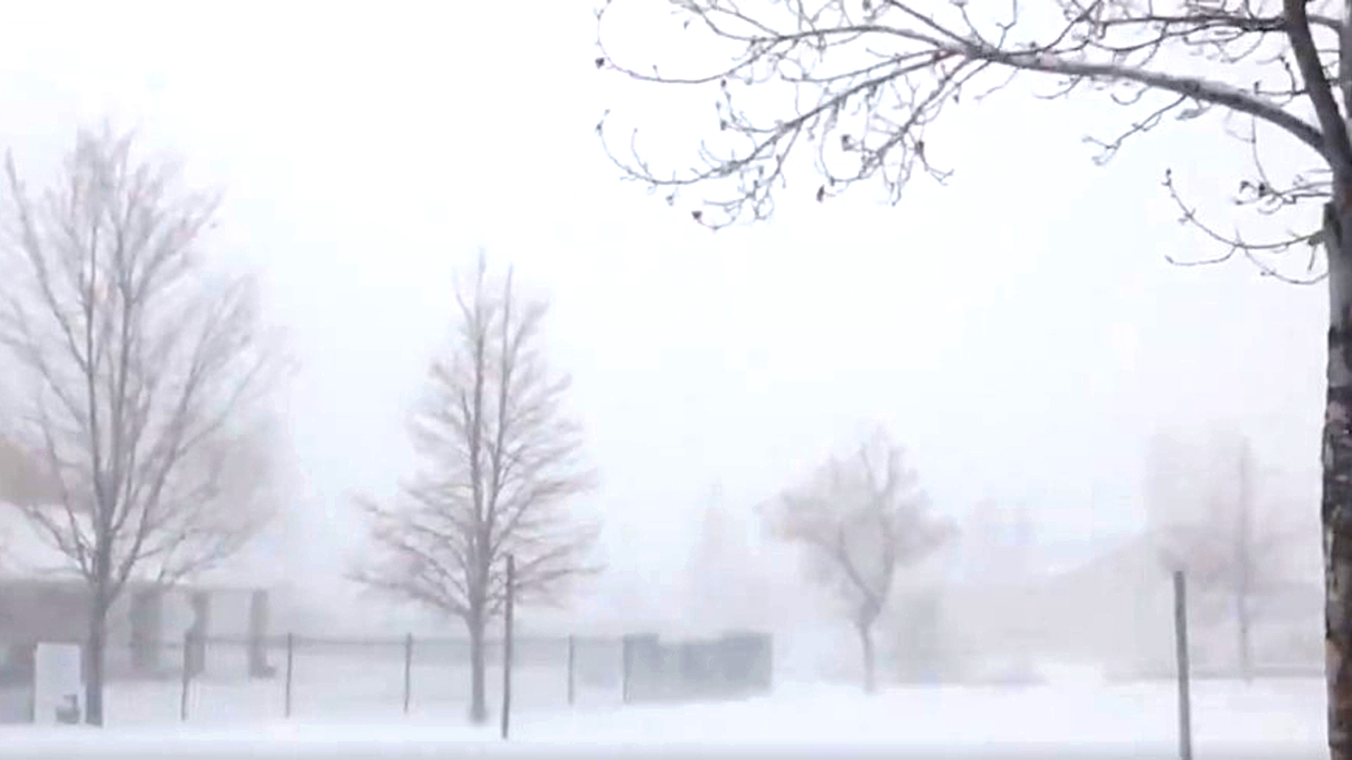 One Of The Biggest Snow-Storms In US History Brings Record-Breaking 1.3 Metres Of Snow And Lots Of Power Outages