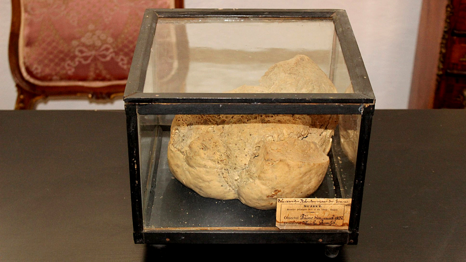 Stale Standing: World's Oldest Loaf Survives After Being Locked Up For Decades By Communists