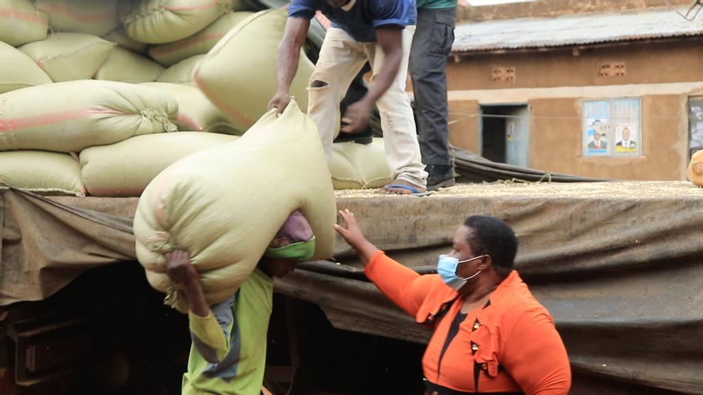 VIDEO: Kenya's Ban On Maize Imports Creates Backlog At Uganda Border