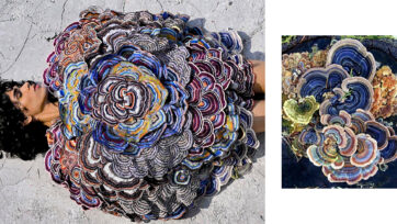 Mushrooms That Thrive In Decay Inspire Indian Designer's Show