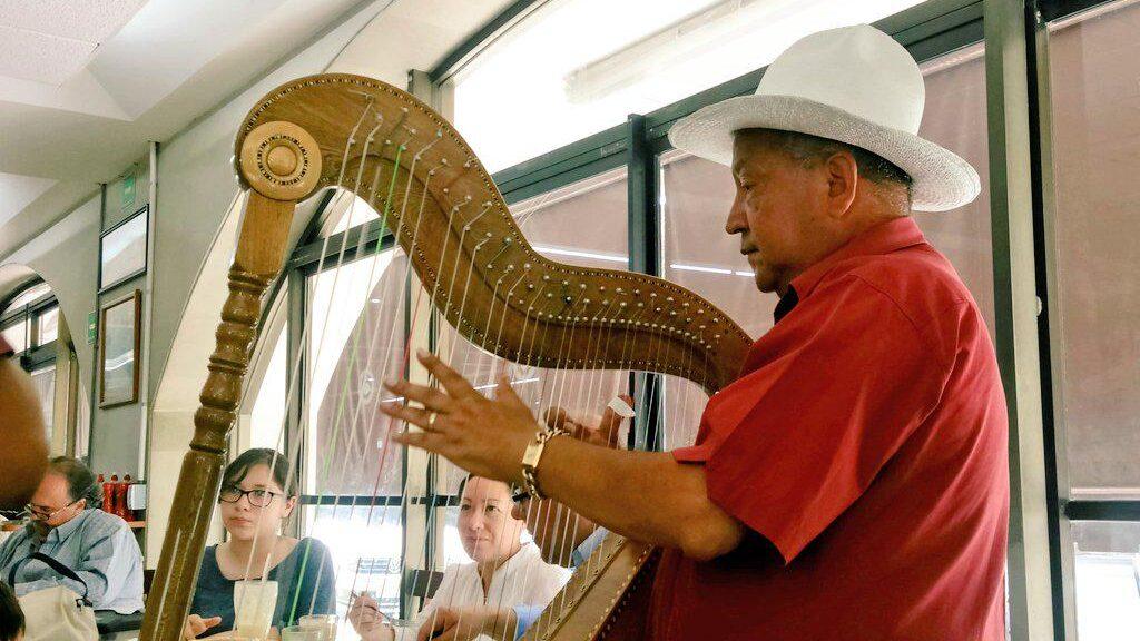 El arpa suena a jarocho en Veracruz