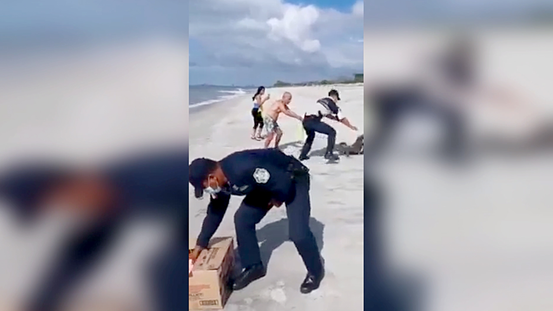 Locals Help Officers Capture Injured Pelican From Beach And Take Him To Vet