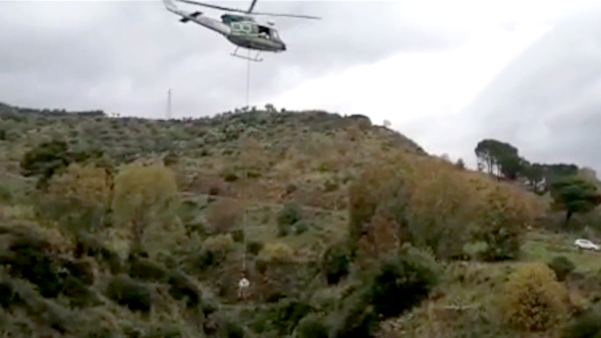 VIDEO: Tusk Force: Firefighters Rescue Horse From 120ft Ravine After It Fled From Wild Boars