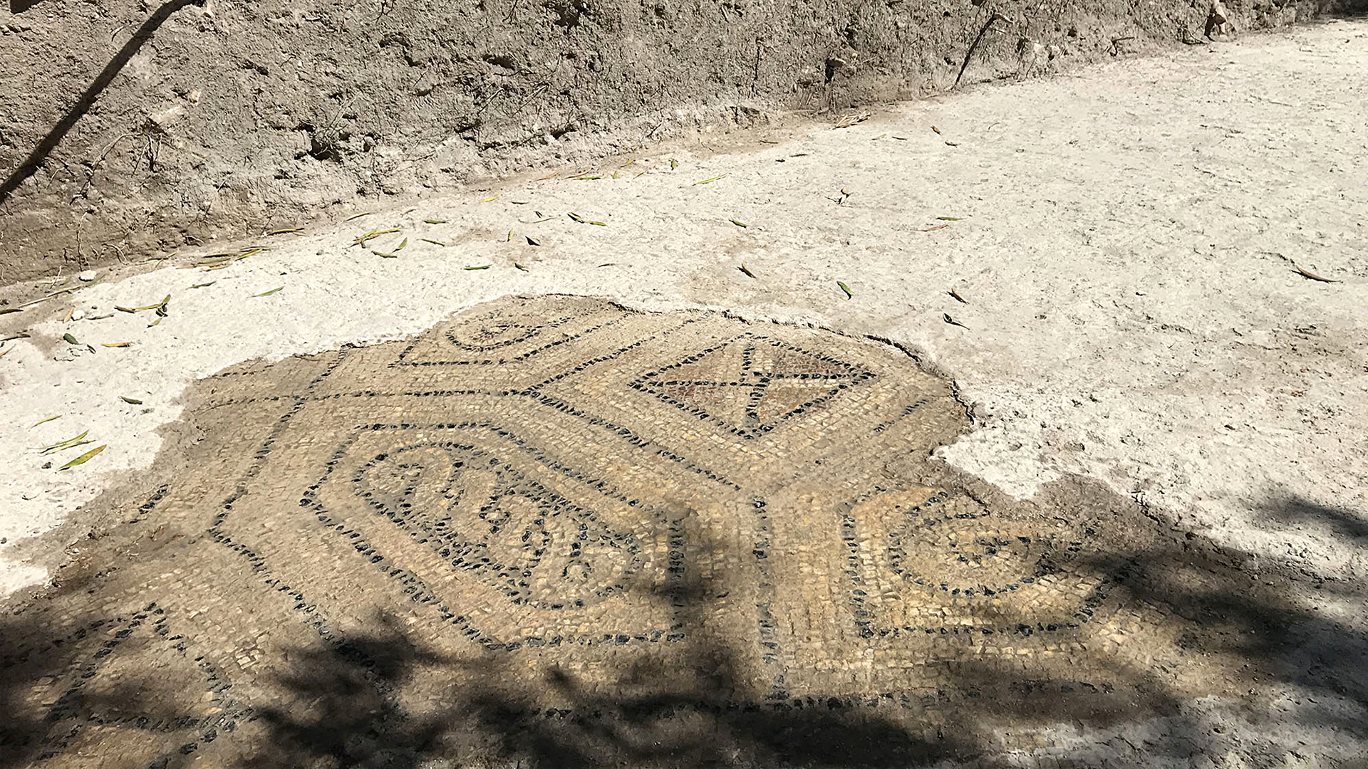 Massive Roman Villa From 4th Century With Huge 60ft Mosaic Discovered In Southern Spain