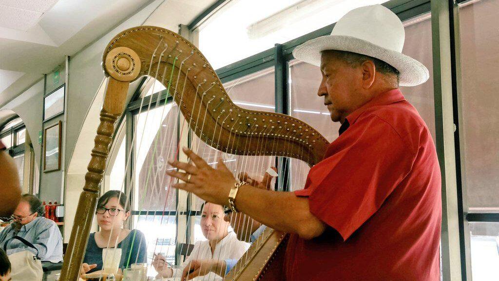 The Jarocho Harp: The Heavenly Sound Behind La Bamba
