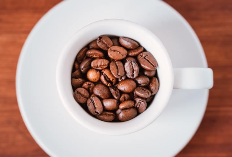 Café de Veracruz es considerado el mejor de México