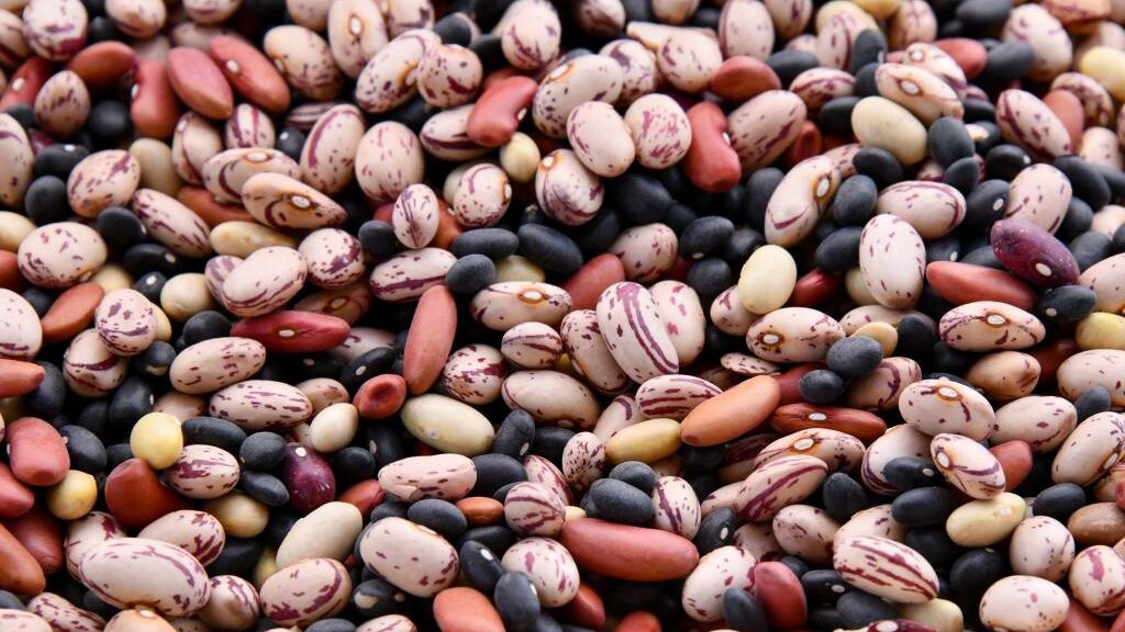 Bean Counters: Legume's Versatility Is Key To Delicious Mexican Cuisine