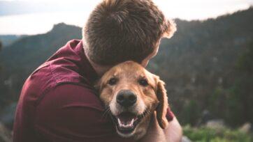 Se dice que las mascotas dan todo su amor y no piden nada a cambio. Perderlos puede ser un golpe muy duro. (Eric Ward/Unsplash)