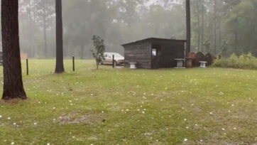 Large hail, heavy rain and damaging winds in Thomasville, Georgia, on April 24, 2021. (@Greg_Tish/Real Press)