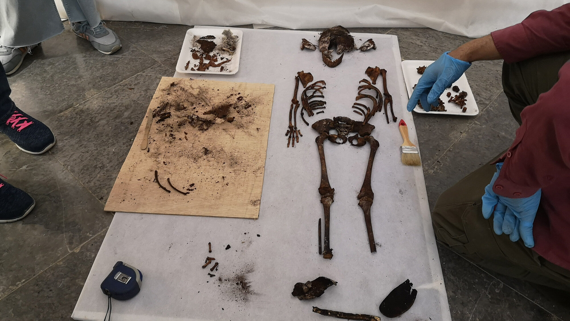 VIDEO: Grave Of Thrones: Ancient Tomb Of Child Princess Found In Game Palace